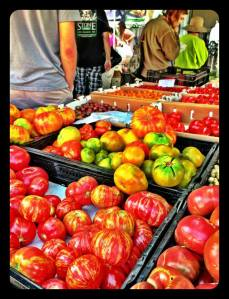 Heirloom tomatoes of many varieties
