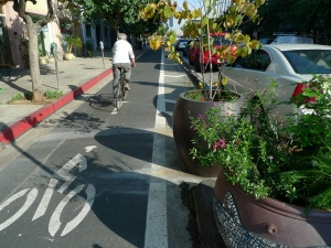 A Cyclist rides the 3rd Street Cycletrack (protected bike lane) in Long Beach.  The lane is separated from the moving autos by the parked cars and a series of planters.
